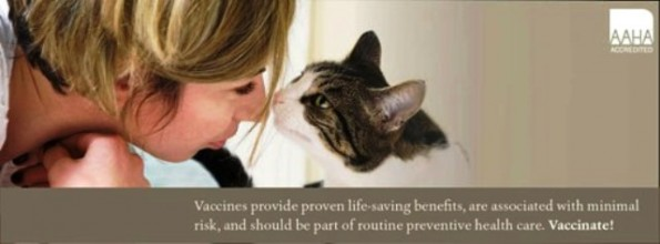 AAHA cat vaccinate forms