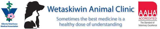 Logo for Wetaskiwin Animal Clinic