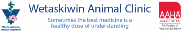 Wetaskiwin Animal Clinic